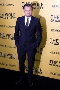 Leonardo DiCaprio Verdienst