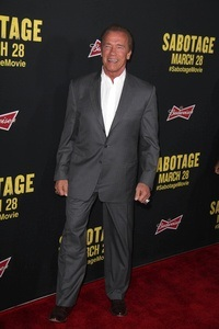 Arnold Schwarzenegger Verdienst