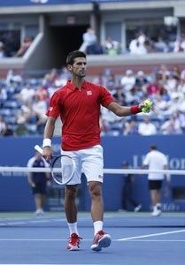 Novak Djokovic Einkommen