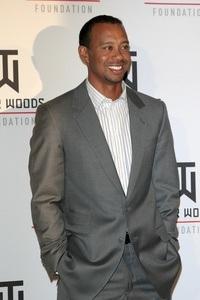Tiger Woods Einkommen