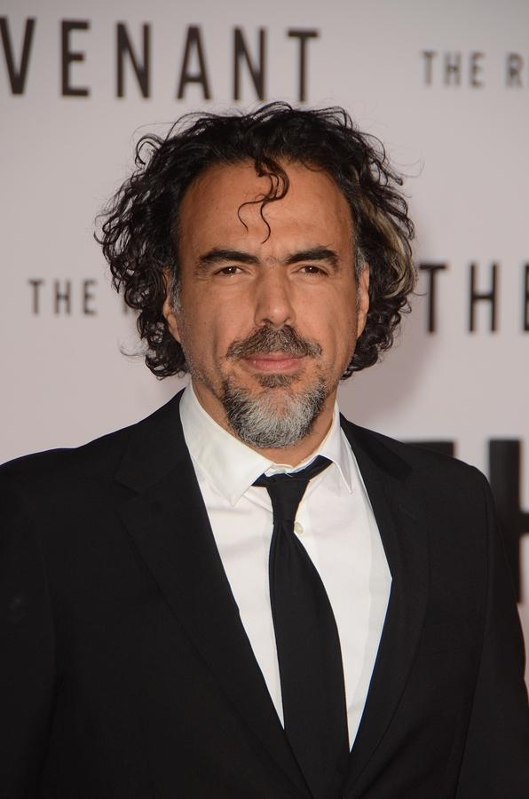 Alejandro Gonzalez Inarritu Vermögen