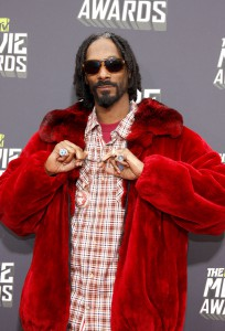 Snoop Dogg Einkommen