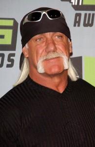 Hulk Hogan Vermögen