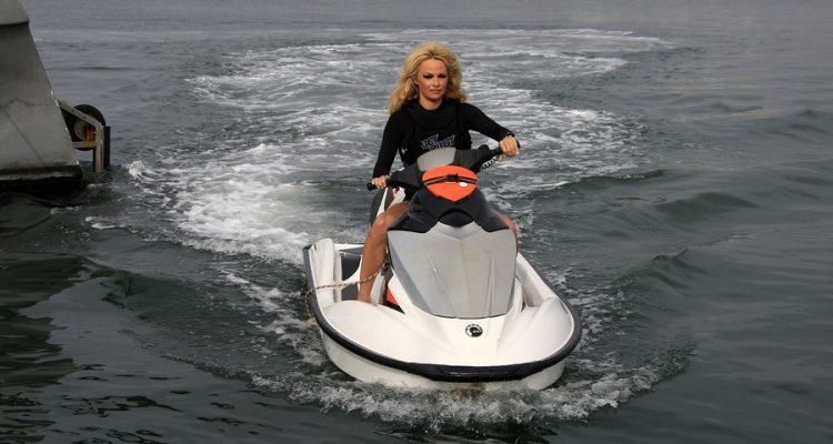 Das Vermögen von Pamela Anderson