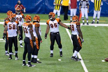 Cincinnati Bengals Gehälter