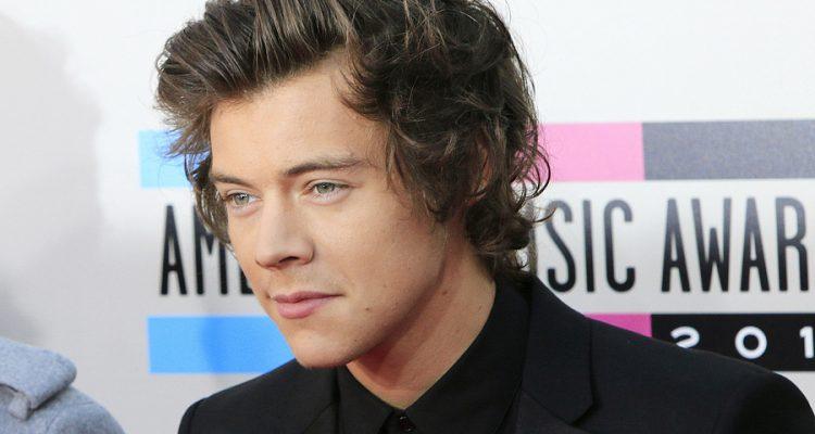Vermögen von Harry Styles