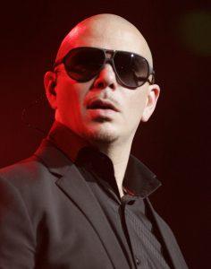 Einnahmen von Pitbull