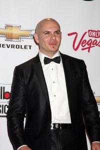 Verdienst von Pitbull