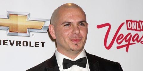 Vermögen von Pitbull